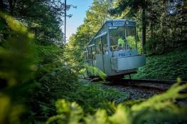 Krynica-Zdrój Atrakcja Punkt widokowy Góra Parkowa
