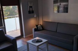 Krynica-Zdrój Nocleg Apartament Apartament DOMINO
