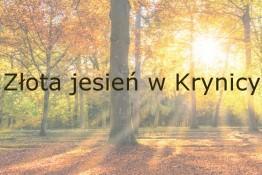 Krynica-Zdrój Nocleg Ośrodek wypoczynkowy Sanatorium Uzdrowiskowe Leśnik-Drzewiarz